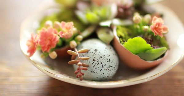 Mini garden planted in eggshells -- pretty centerpiece then give away as
