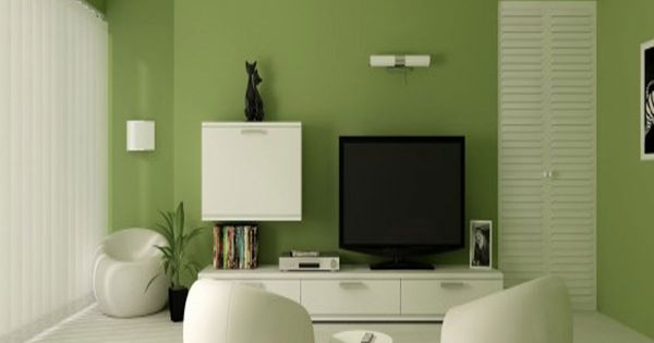 Modern Living Room With Olive Green Color Schemes