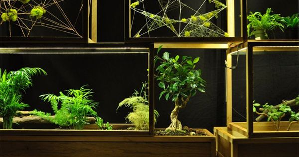 Plant-In City: Architecture and Technology for Plants, help these guys out and