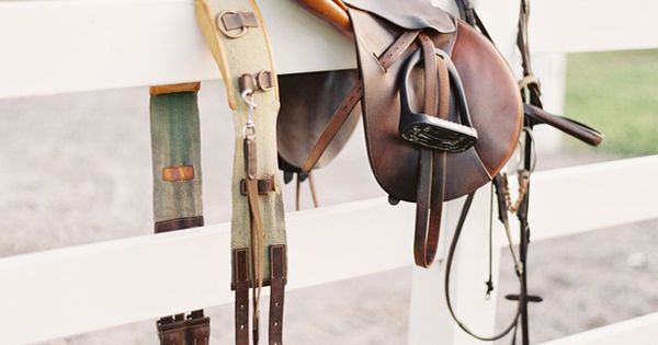Evidence of the day's work. A surcingle, saddle and bridle hang quietly