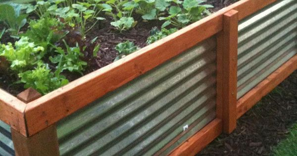 Galvanized steel raised bed garden - pretty cool and much more efficient