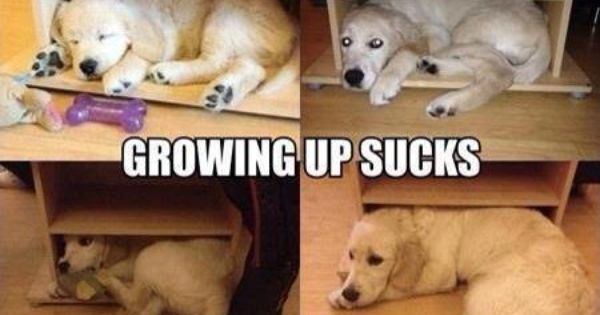 #GrowingUp