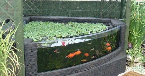 Outdoor Aquarium Aquariums Gardens And Garden