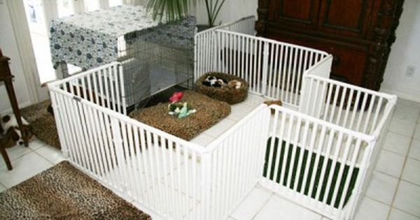 Puppy Pen Made With Pvc Pipes Grooming Dog Room