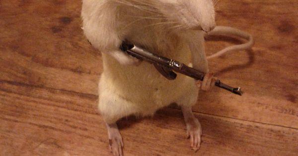 Taxidermy Rat With Machine Gun 110 00 Via Etsy