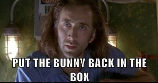 PUT THE BUNNY BACK IN THE BOX | Bunny, Good movies, Backs