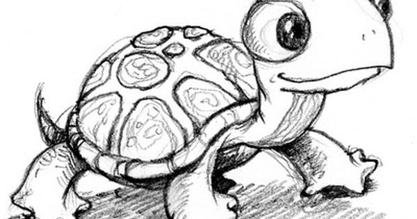 The Doodle Delicatessen When In Doubt Draw A Cute Turtle Turtle Sketch Turtle Drawing Animal Drawings