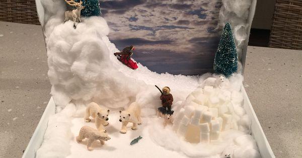 Polar Bear Diorama - School Projects   Pinterest - Diorama ...