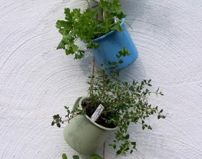 Another clever hanging herb garden idea.