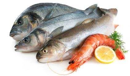 رؤية السمك في المنام للعزباء والمتزوجة والحامل Fish And Meat Frozen Seafood Fish Recipes