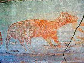 Female Thylacine Aboriginal Painting With Two Tails Showing