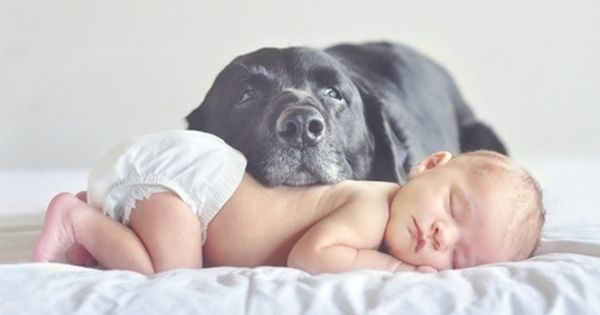 A dog and his baby. Thought of my best friend when I