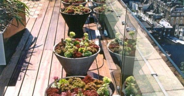 coole idee f r die gestaltung einer dachterrasse mit pflanzen dachterrasse pinterest. Black Bedroom Furniture Sets. Home Design Ideas
