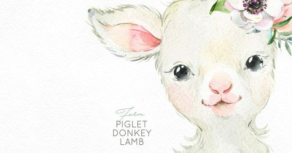 Farm Piglet Donkey Lamb Watercolor Little Animals Clipart Baby Pig Country Fun Sunglasses Flowers Wreath Kids Nursery Art Baby Shower In 2021 Animal Clipart Baby Animal Drawings Watercolor Animals