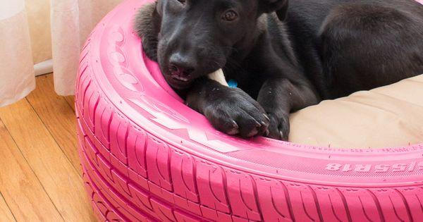 lit pour chien dr les de cabanes pinterest chiens lits pour chat et pneus recycl s. Black Bedroom Furniture Sets. Home Design Ideas