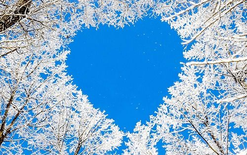 Human being Nature White - a Royalty Free Stock Photo from ...   Hearts In Nature Winter