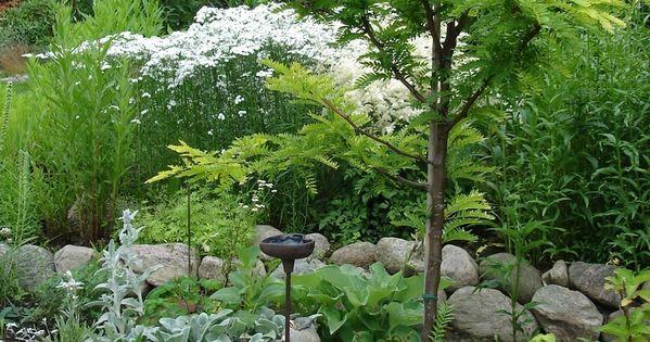 Tr Dg Rd Tr Dg Rdar Pinterest Gardens And Garden Ideas