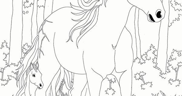 Coloriage bella sara jument et son poulain horses pinterest adult coloring - Coloriage bella sara ...