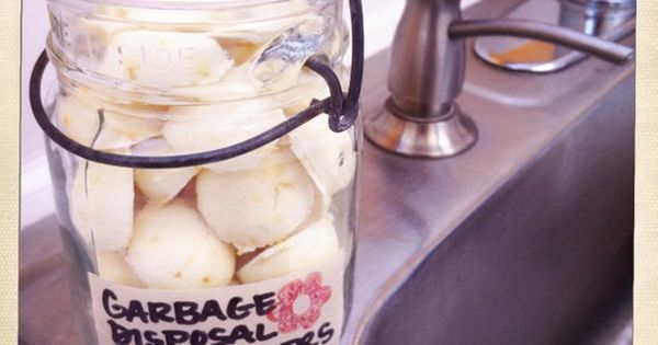 Homemade Garbage Disposal Cleaner