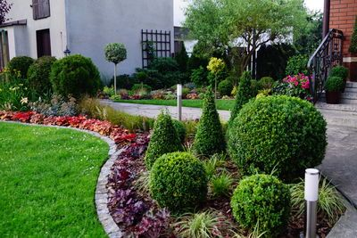 Rabata Przed Wejsciem Przed Domem Iglaki Strzyzone Zurawki Ogrod Garden Shrubs Small Backyard Landscaping Garden Services Backyard Landscaping