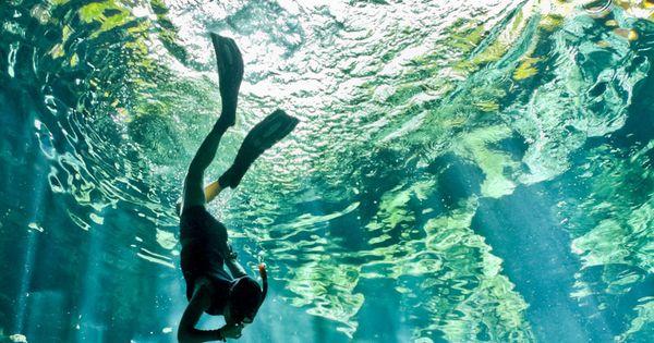 Cenote diving, Peninsula de Yucatan, Mexico. Bucket list.