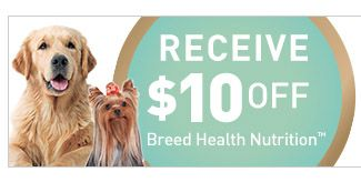 image relating to Royal Canin Printable Coupon called Royal Canin - Coupon for Canine Foods, $10 off Royal Canin
