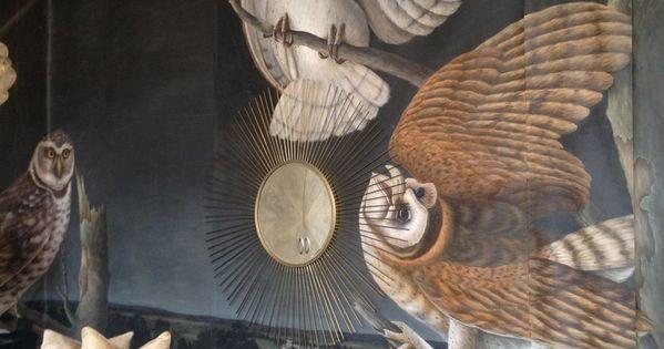 A Book By My Bed Shades Of Grey John James Audubon Owl