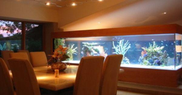 Un acuario en casa ooo peceras ooo pinterest - Peceras en casa ...