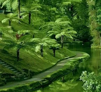 Ver Green As Green As I Ve Ever Seen Green Nature Landscape Scenery