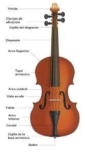 Partes Del Violin Violines Tocando Violin Armonica