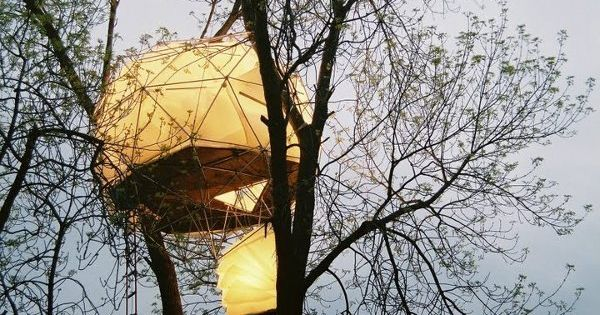 Golden treehouse