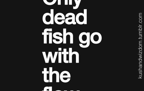 Only dead fish go with the flow. Using this when my cousin