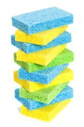 Which Type Of Sponge Holds The Most Water Science Project Education Com Types Of Sponges Science Fair Science Projects