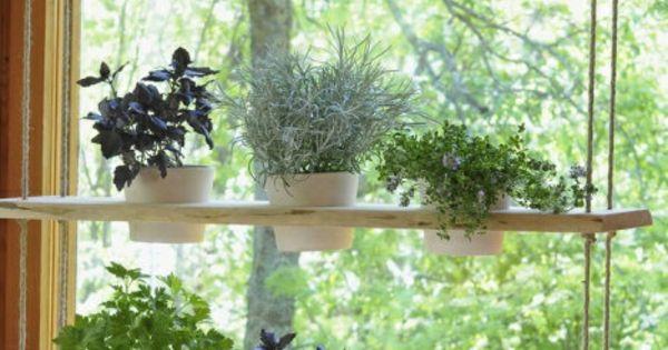 h ngende zimmerpflanzen holzregal h ngend topfpflanzen wohnideen pinterest pflanzenk bel. Black Bedroom Furniture Sets. Home Design Ideas