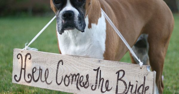 "The cutest ""Here comes the bride"" announcement we've ever seen. MarthaStewartWeddingsMagazine"