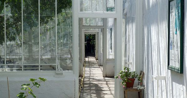 I will probably end up living in a huge 'green house' (glass