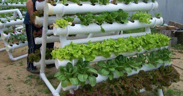 Do It Yourself Garden: How To Build Small PVC Pipe Vertical Vegetable Garden, How
