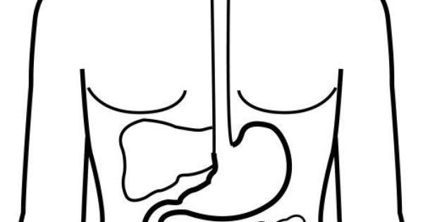 pictogramas el cuerpo humano - maestras al
