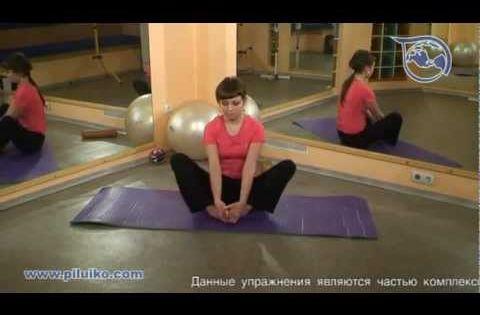 Суставная гимнастика для коленей