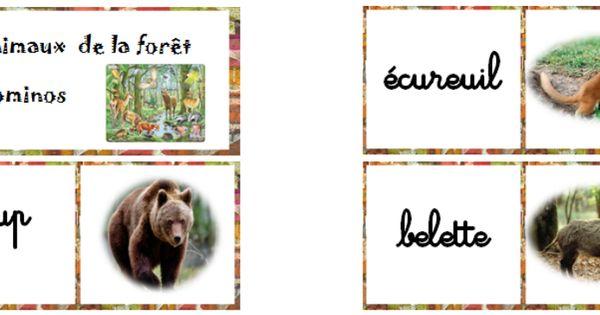 lexique vocabulaire les animaux de la for t vocabulaire lexique pinterest animaux. Black Bedroom Furniture Sets. Home Design Ideas