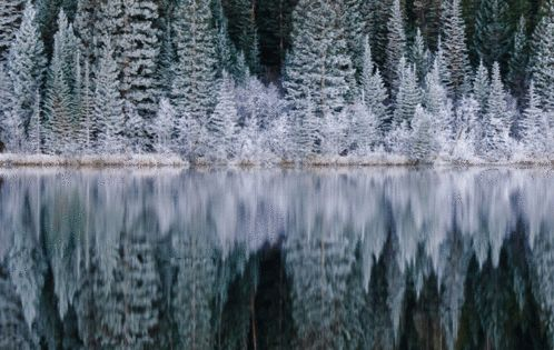 Bear Lake in Rocky Mountain National Park, Colorado WinterWonderland