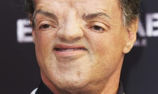 Celebrity Sloth Faces | *Giggles. | Haha funny, Funny ...