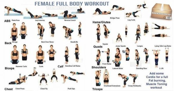 Female Full Body Workout - Healthy Fitness Training Sixpack Abs ...
