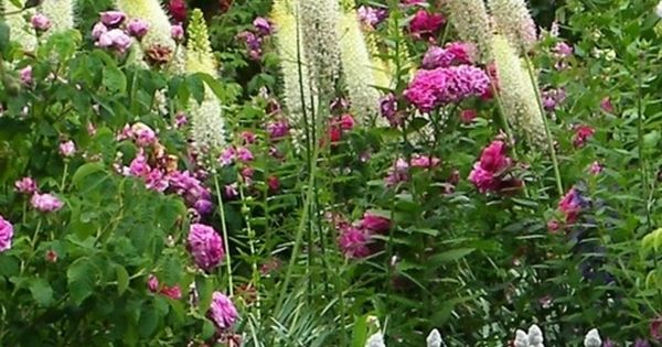 Cotttage garden jardin de cur potager en carr jardin for Jardin anglais pinterest