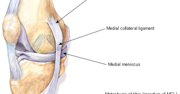An Overview of Knee Injuries