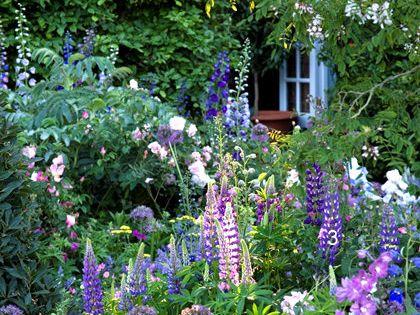 Mom already wanted an English garden. We were work on her garden