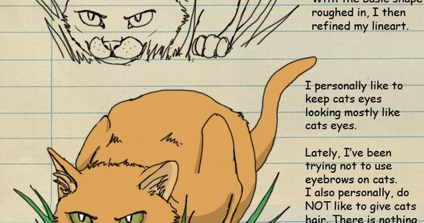 How To Draw Warrior Cats Pt 4 By Heylorlass On Deviantart
