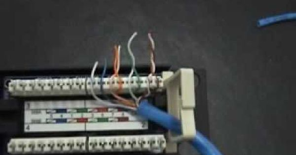 How To Punch Down A 12port Patch Panel Patch Panel Paneling Home Automation