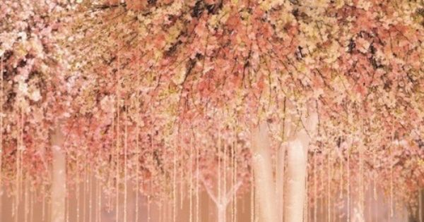 Pink Trees Cherry Blossom Wedding Pink Trees Pink Blossom
