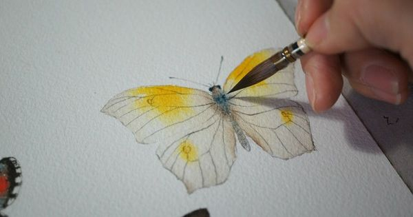 watercolour butterflies